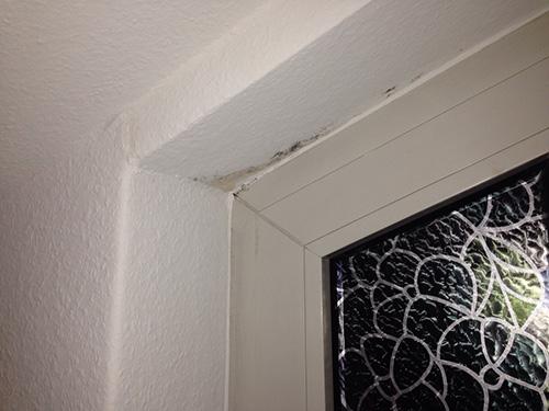 """Auch hier ist ein """"Klassiker"""" der Schimmelentstehung zu sehen. Die Fensterlaibungen sind systembedingte Schwachstellen der Innenräume. Kleine Kniffe können hierbei große Wirkung erzielen."""