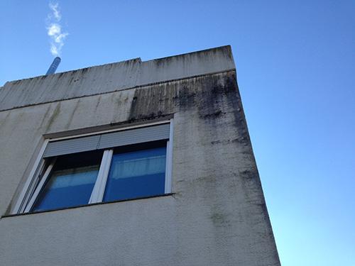 Risse in der Fassade sorgten für leichtes Eindringen von Wasser. Eine dauerhafte Durchfeuchtung der Fassade führte dadurch zu massivem Algenbewuchs.